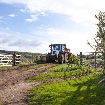 Shilvington Escapes - The Farm
